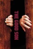 The Good Son (2013)