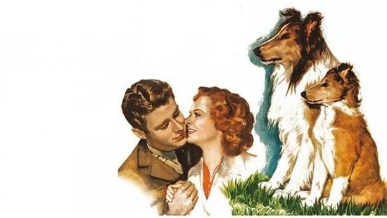 El Cachorro de Lassie