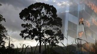 Banking Nature