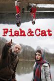 Fish & Cat
