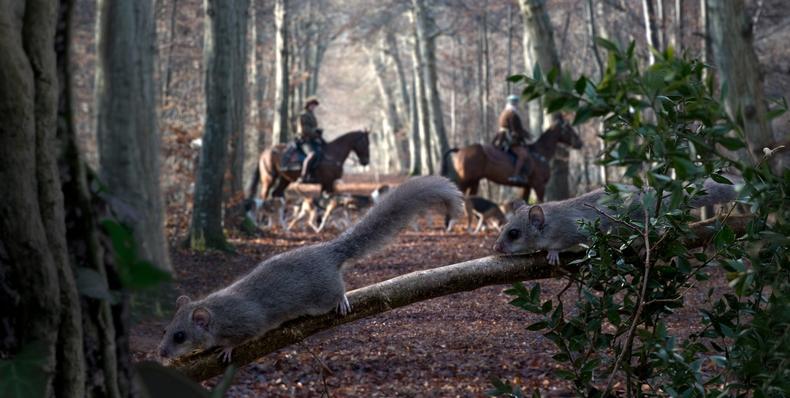 Los habitantes del bosque
