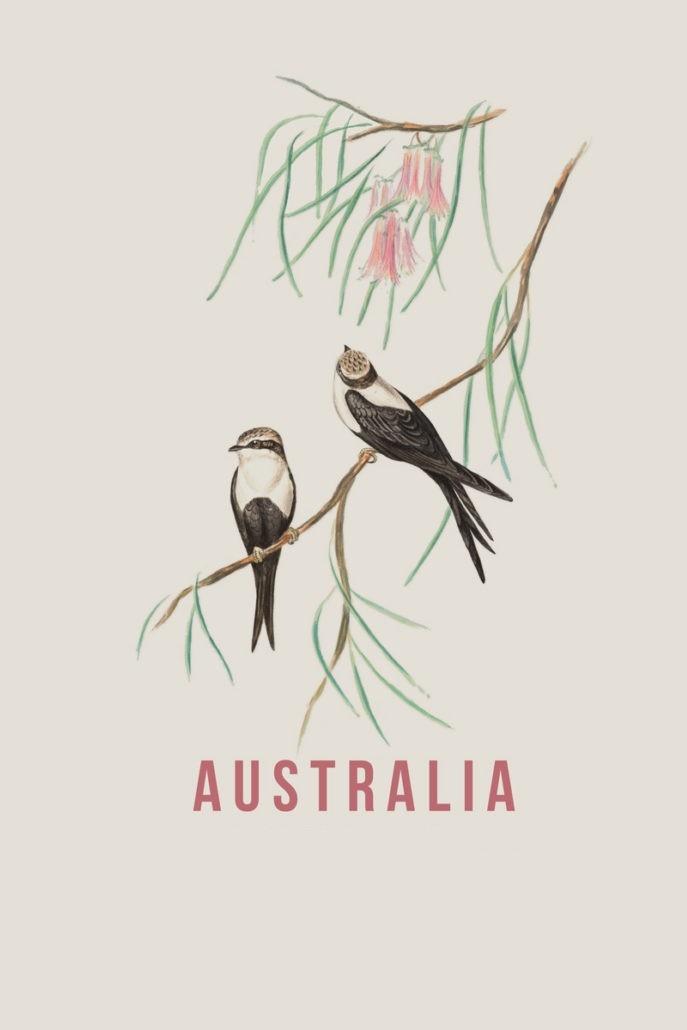 Australia (2017)
