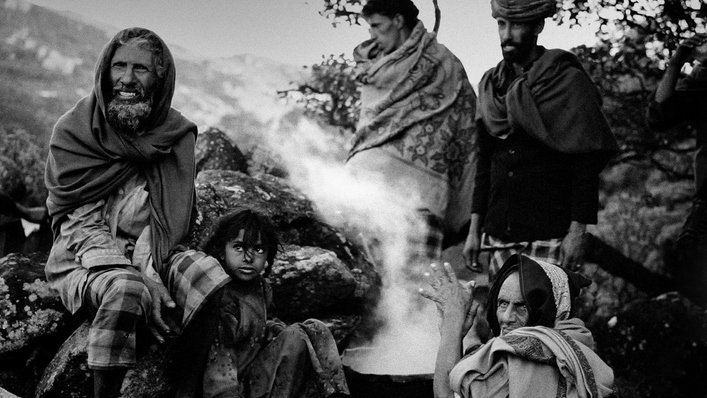 Socotra, la isla de los genios