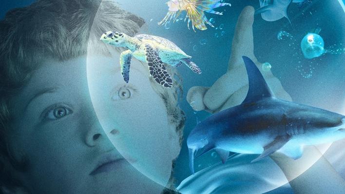 Las maravillas del mar
