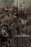 Cavalls morts