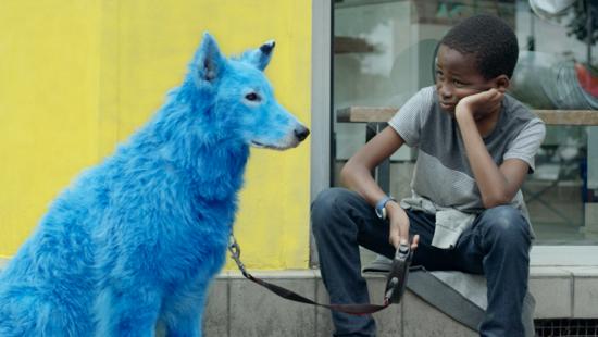 Perro azul