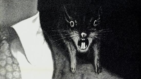 La revolución de las ratas