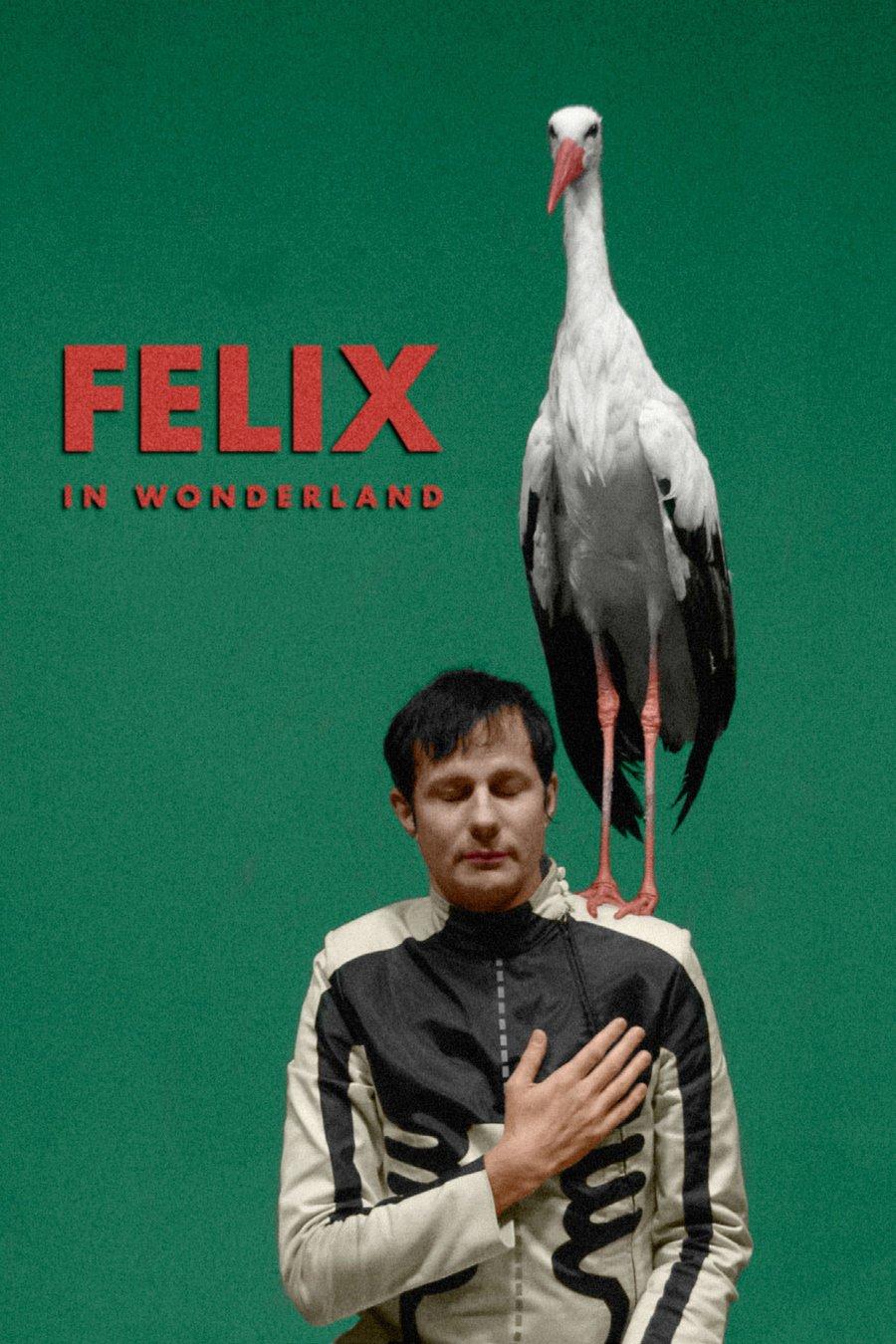Felix in Wonderland