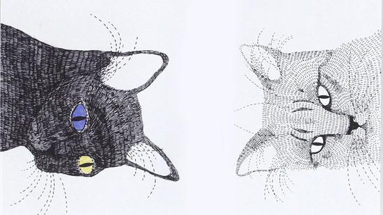 Gato negro, gato blanco