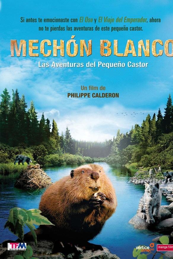 Mechón Blanco, las aventuras del pequeño castor