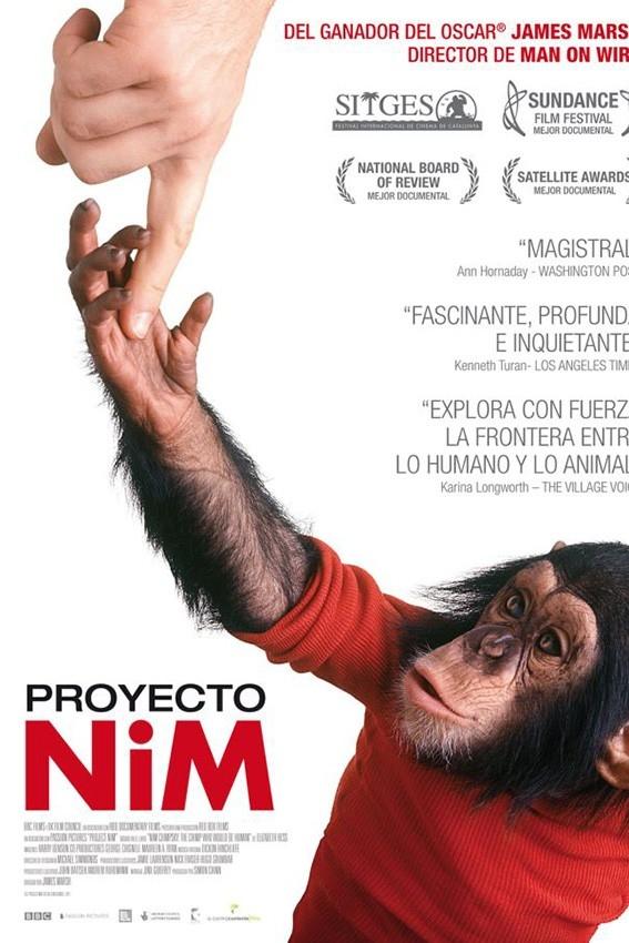 Projecte Nim