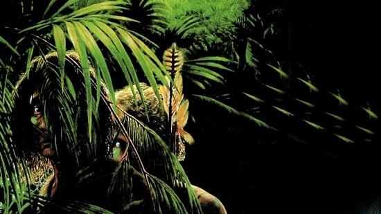 La Selva Esmeralda