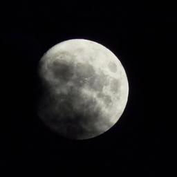 ibizacinefest